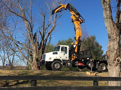 Lexington, KY | Crane Services